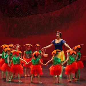 De Hoornse Balletschool image 5