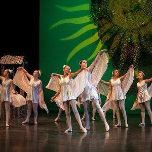 De Hoornse Balletschool image 6