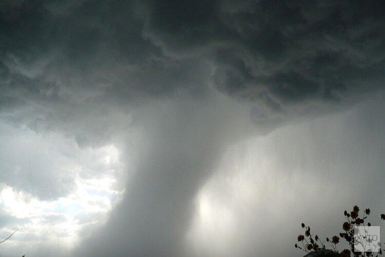 Vermoedelijke windhoos houdt huis in Hem: boom omgewaaid en kas beschadigd